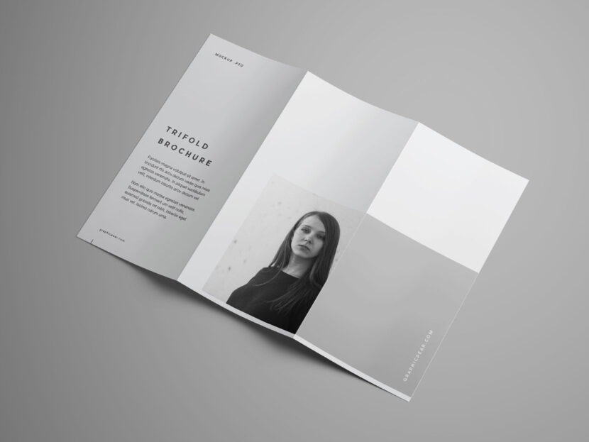 Download Free Black and White Trifold Brochure Mockup