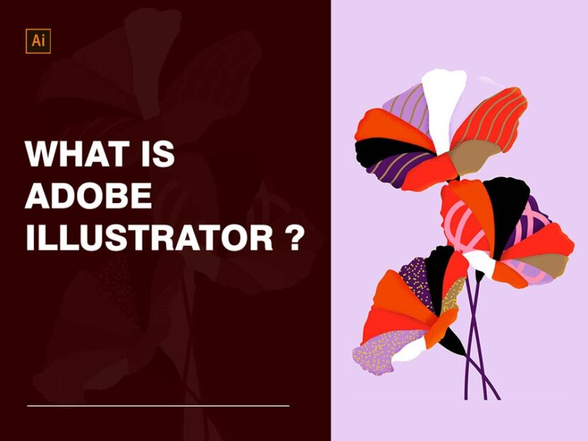 What-is-Adobe-Illustrator-